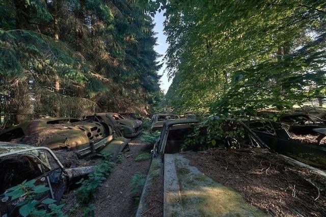 Name:  chatillon-car-graveyard-72.jpg Views: 227 Size:  135.6 KB