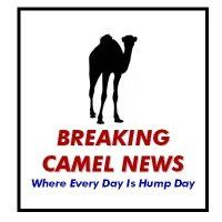 Name:  BreakCamelNews-705233.jpg Views: 450 Size:  7.7 KB