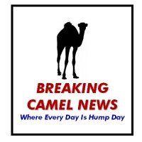 Name:  BreakCamelNews-705233.jpg Views: 384 Size:  7.7 KB